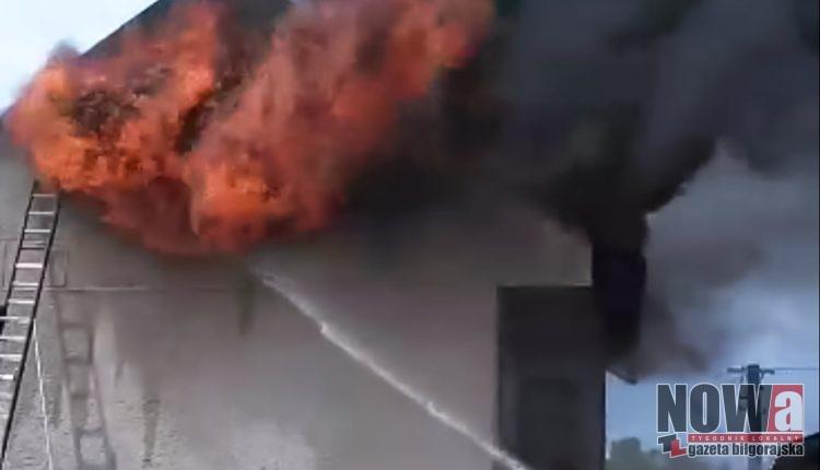 Pożar w Potoku Górnym (2 of 6)