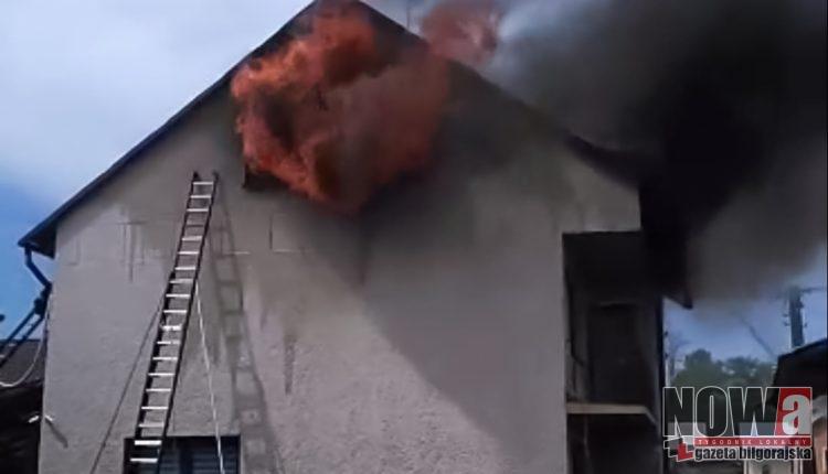 Pożar w Potoku Górnym (3 of 6)