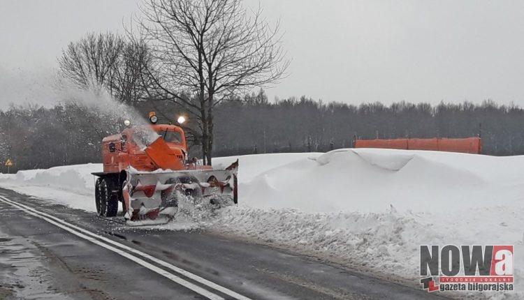 Pług Wirnikowy RDW OD Chełm