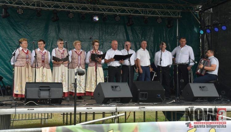 BIłgoraj Bukowa Jagodzianki (3)